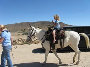 Cole_riding
