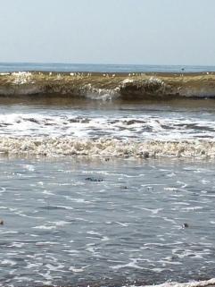 Cabrillo wave