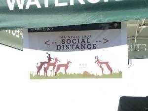 Antelope social distance